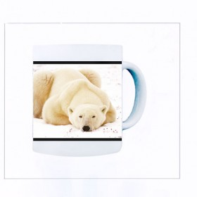 Polar Morning  Mug