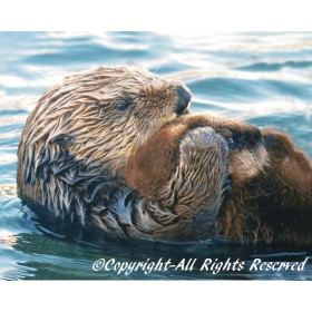 Sea Otter Pup (metal art)